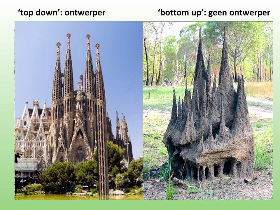 'top down': ontwerper 'bottom up': geen ontwerper