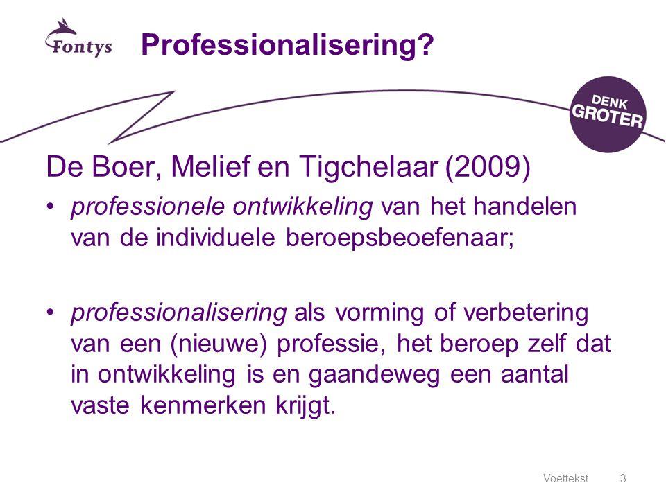 De Boer, Melief en Tigchelaar (2009)