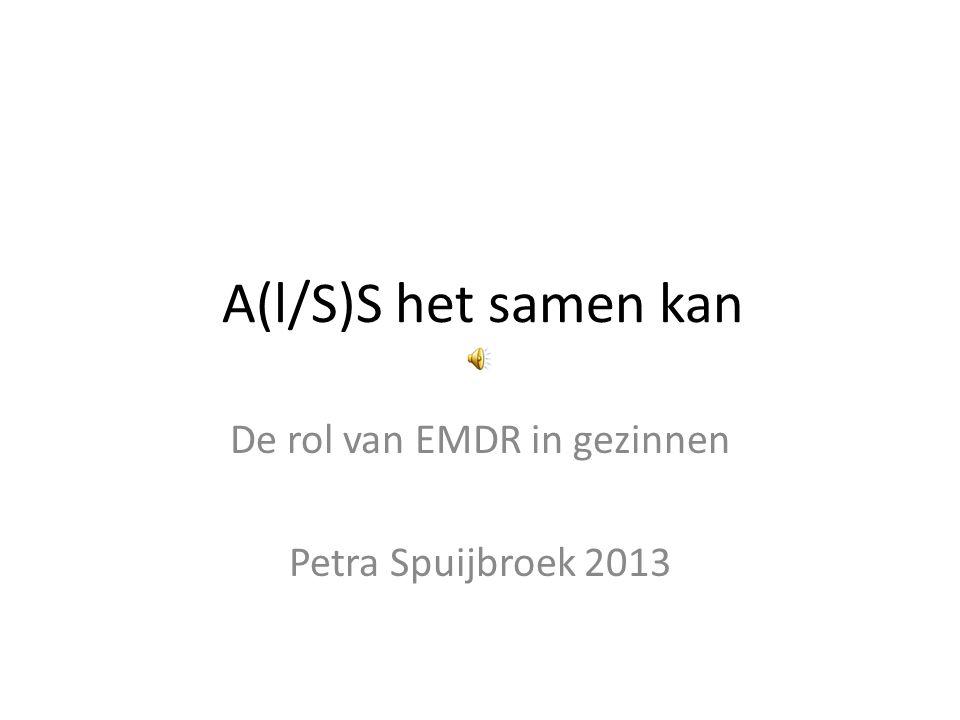 De rol van EMDR in gezinnen Petra Spuijbroek 2013