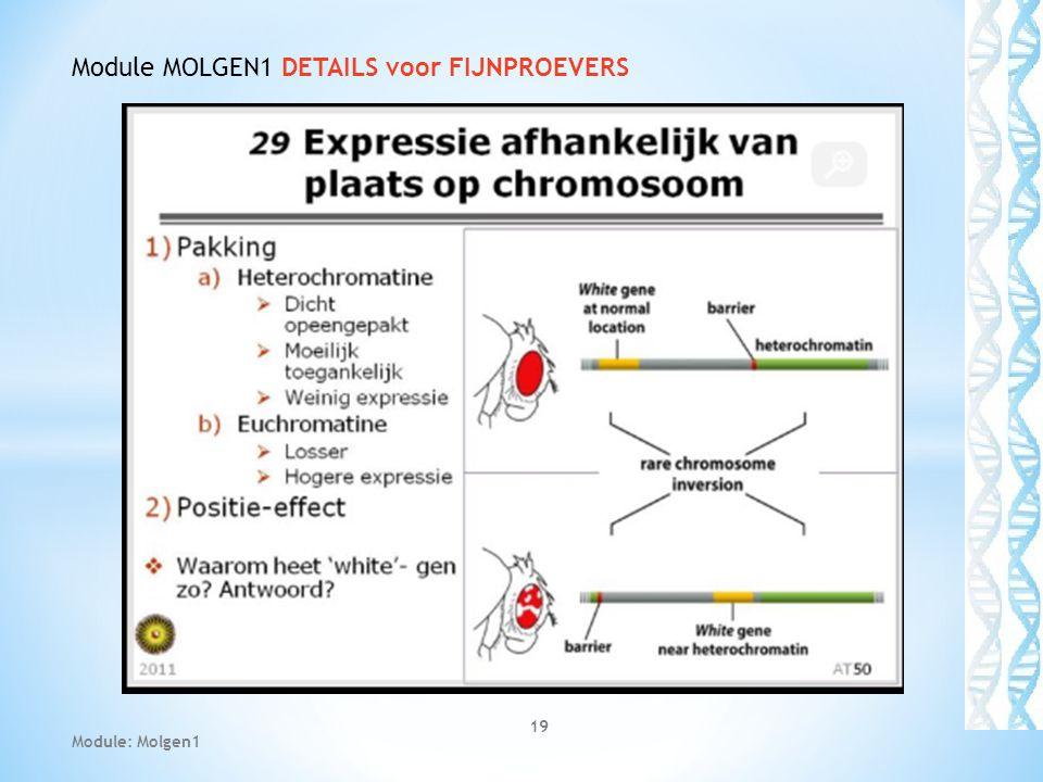 Module MOLGEN1 DETAILS voor FIJNPROEVERS