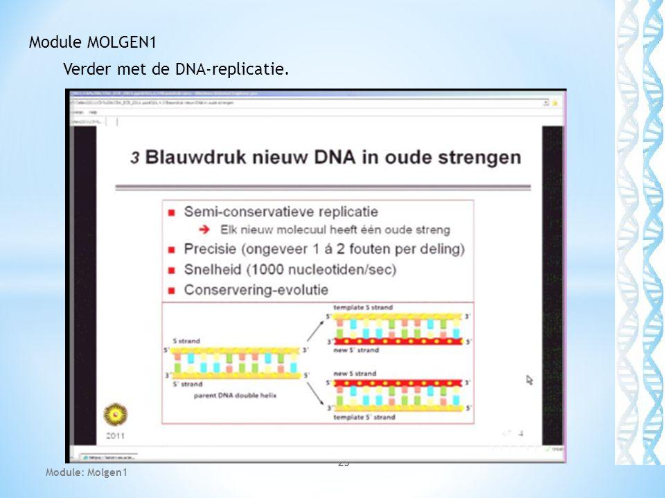 Verder met de DNA-replicatie.