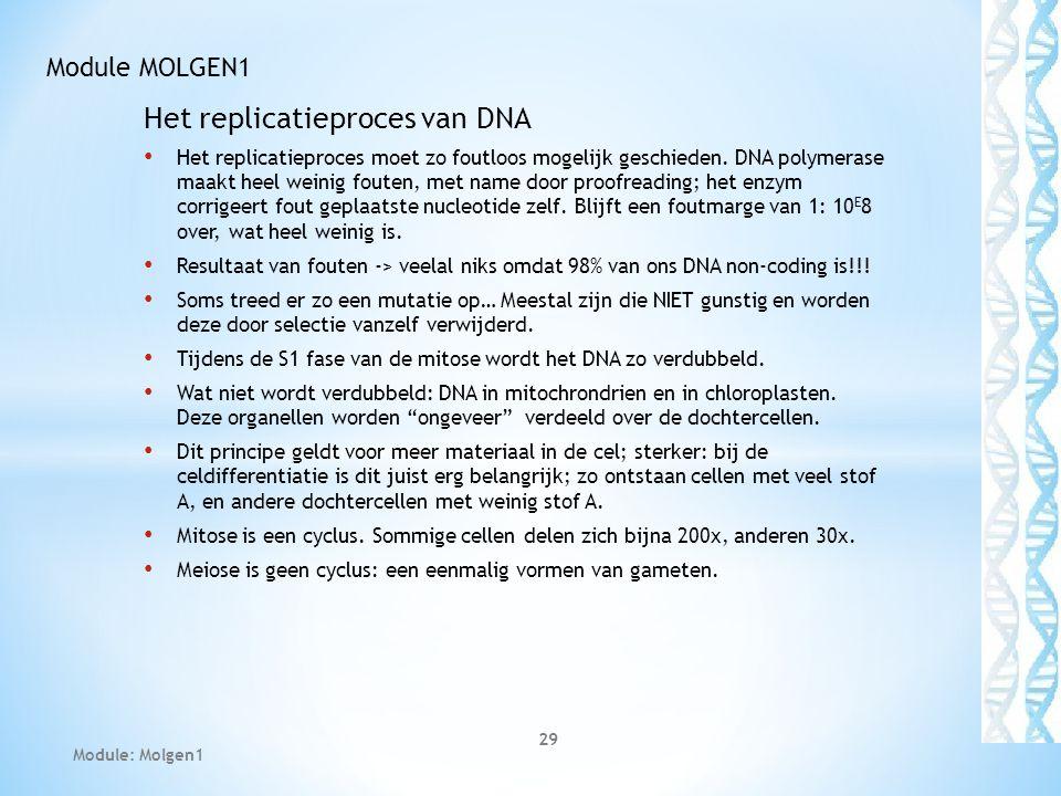 Het replicatieproces van DNA