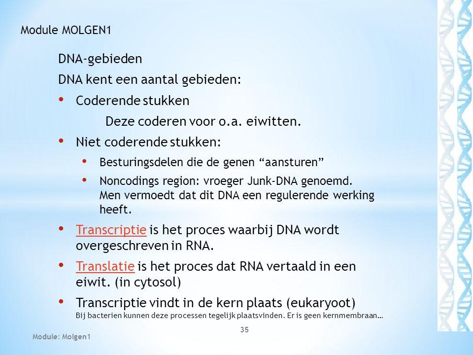 DNA kent een aantal gebieden: Coderende stukken