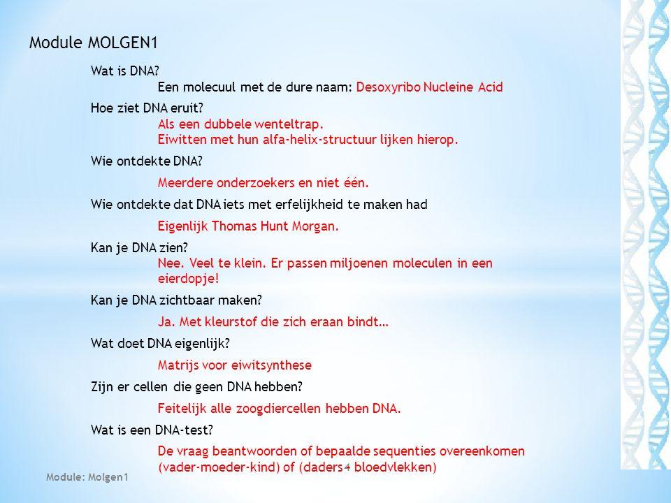 Module MOLGEN1 Wat is DNA Een molecuul met de dure naam: Desoxyribo Nucleine Acid.