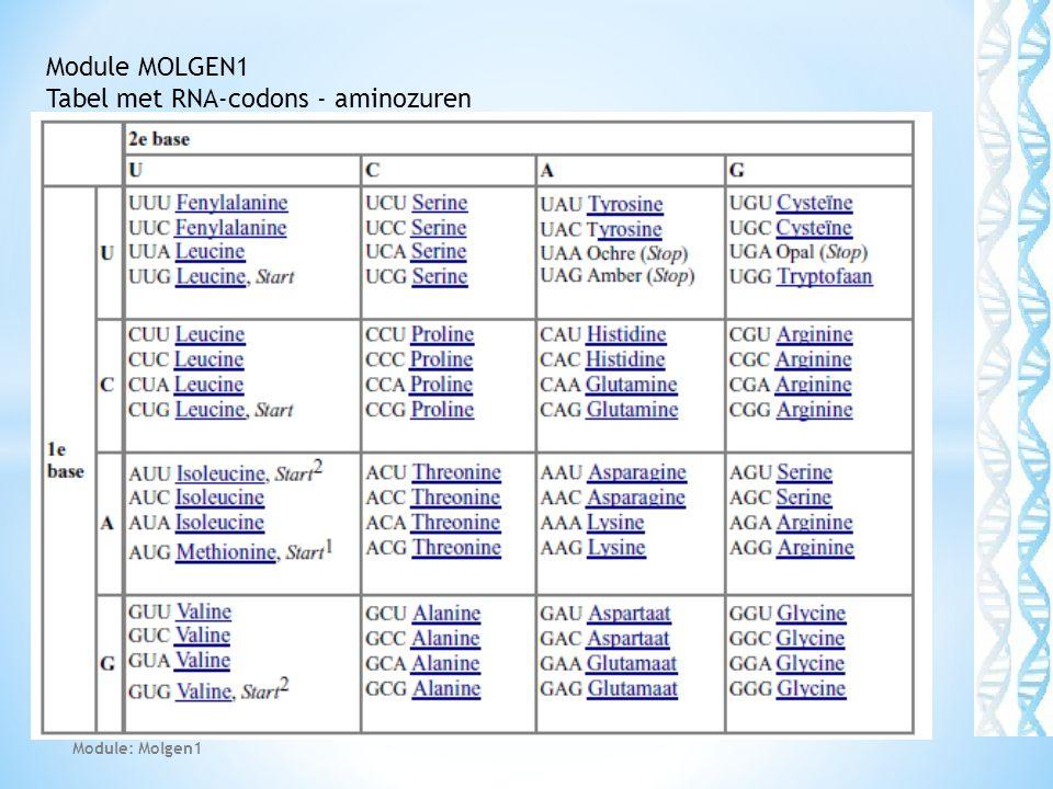 Tabel met RNA-codons - aminozuren