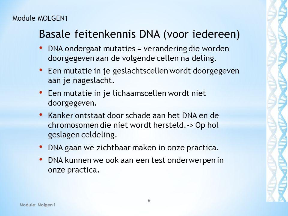 Basale feitenkennis DNA (voor iedereen)