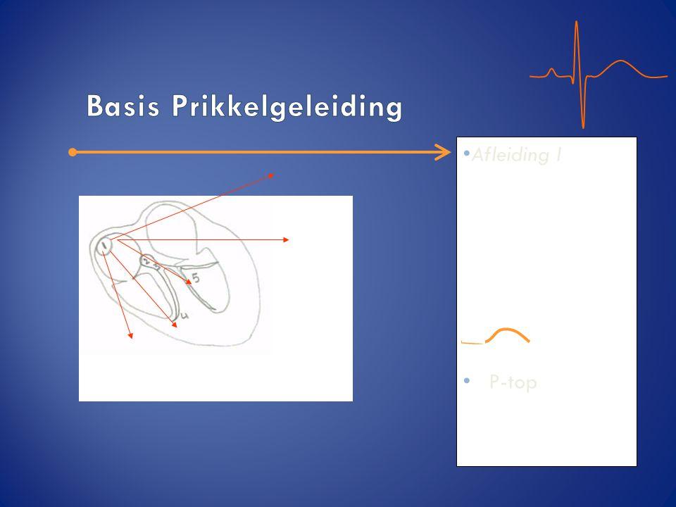 Basis Prikkelgeleiding