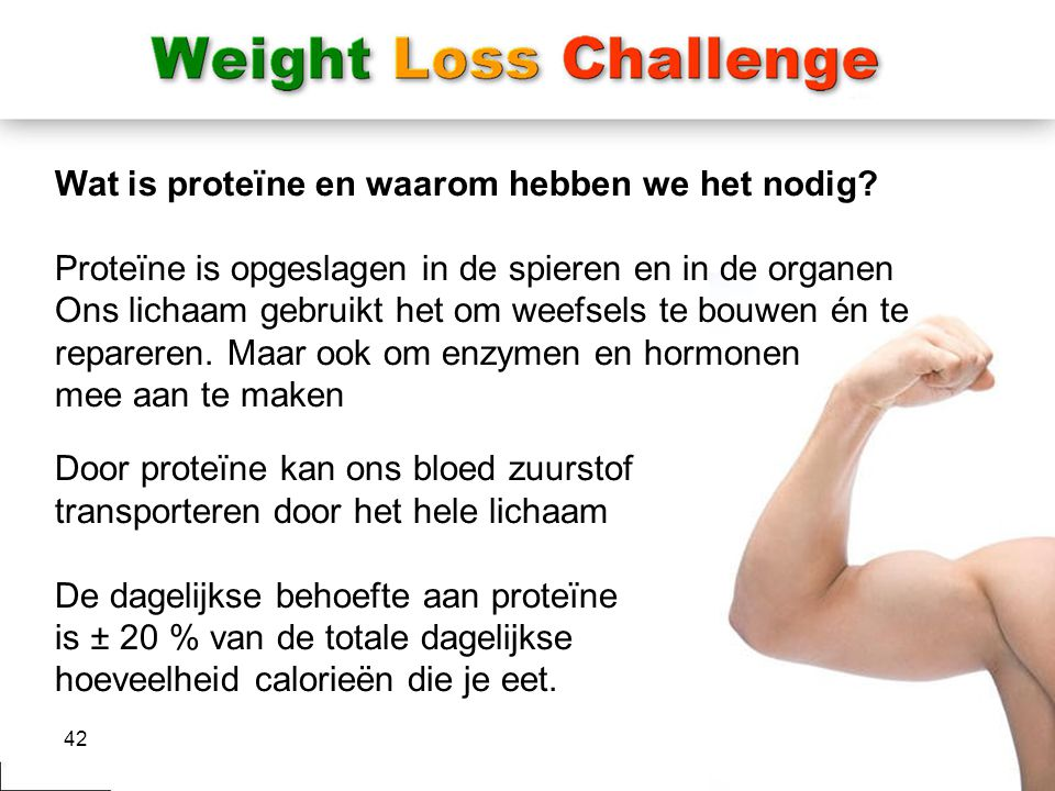 Wat is proteïne en waarom hebben we het nodig