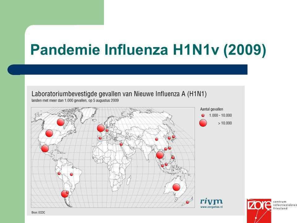Pandemie Influenza H1N1v (2009)