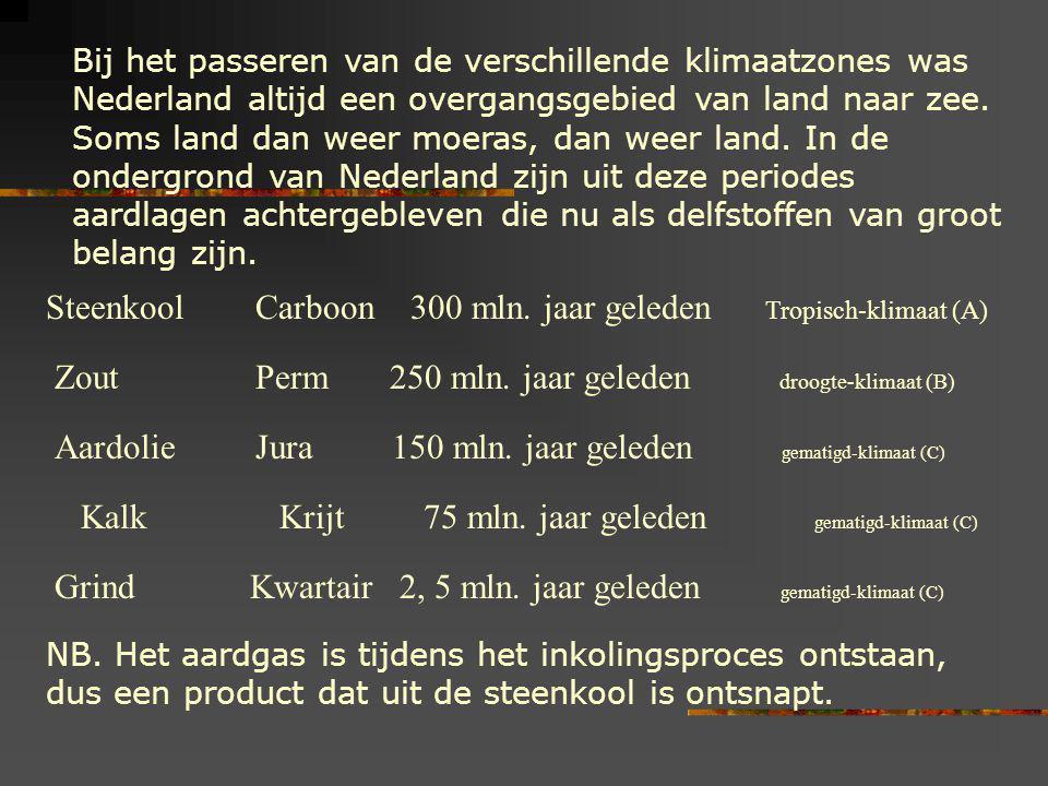 Steenkool Carboon 300 mln. jaar geleden Tropisch-klimaat (A)