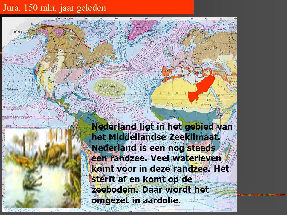 Jura. 150 mln. jaar geleden