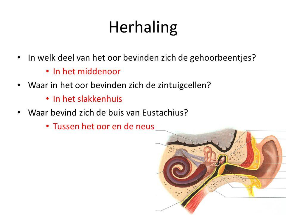 Herhaling In welk deel van het oor bevinden zich de gehoorbeentjes
