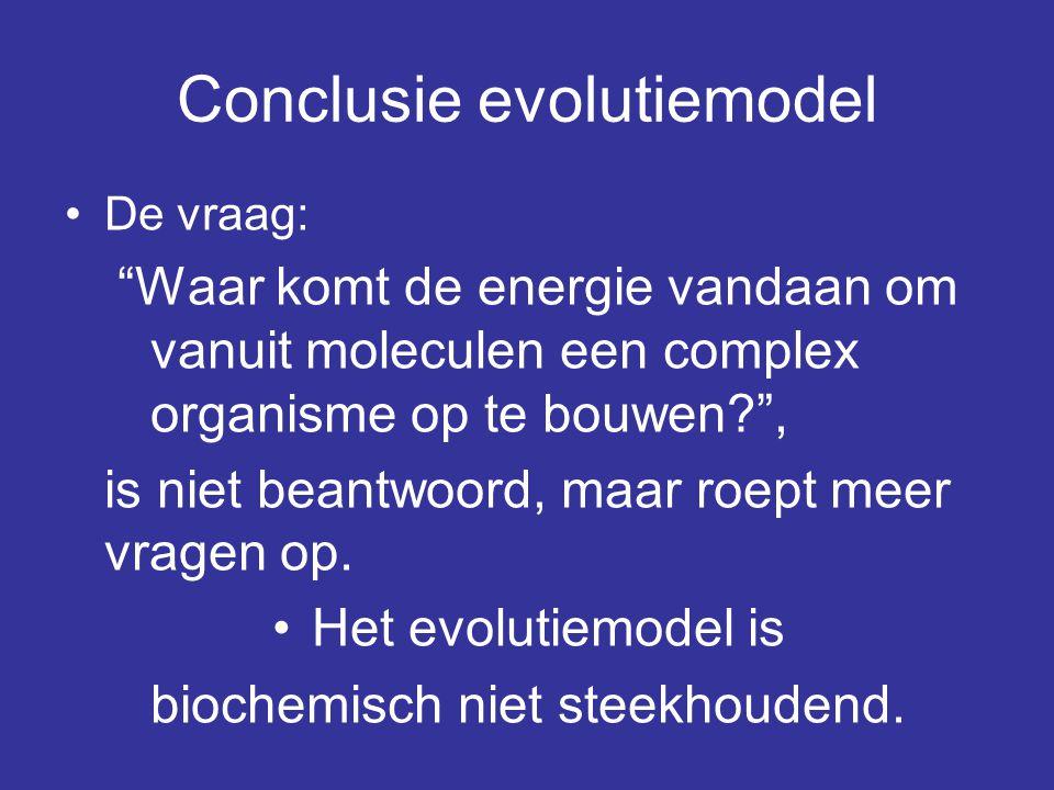 Conclusie evolutiemodel