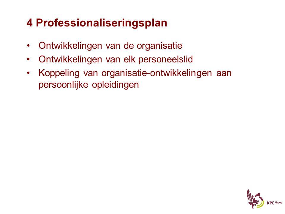 4 Professionaliseringsplan