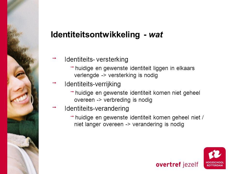 Identiteitsontwikkeling - wat