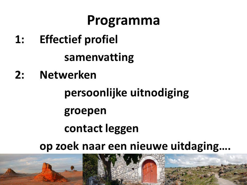 Programma 1: Effectief profiel samenvatting 2: Netwerken