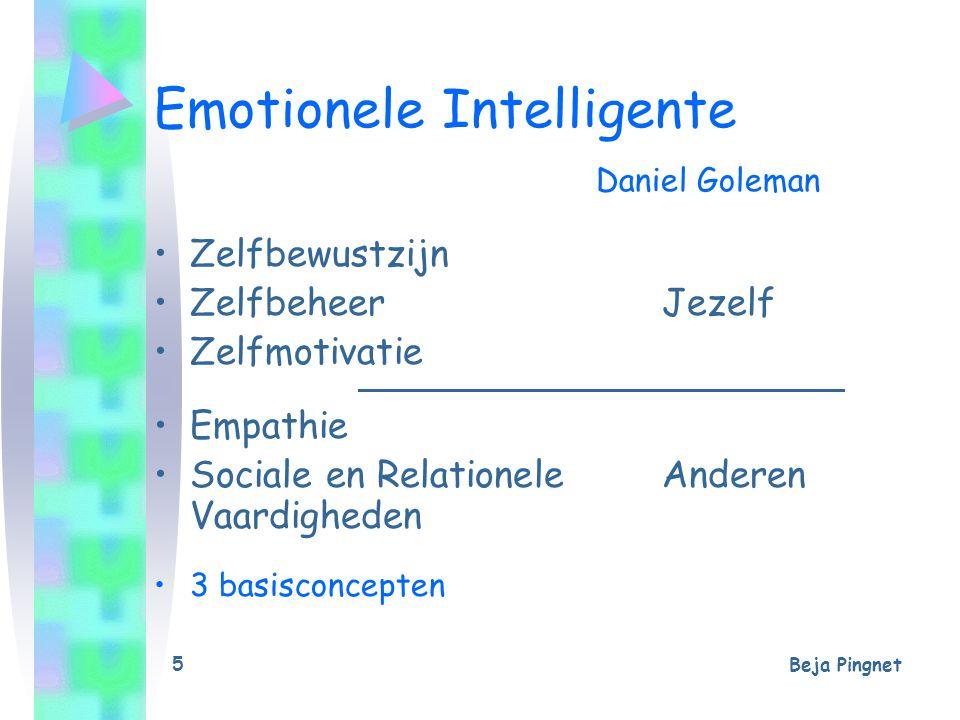 Emotionele Intelligente Daniel Goleman