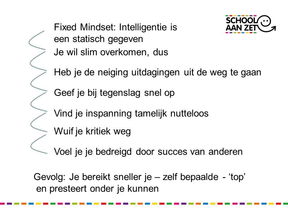 Fixed Mindset: Intelligentie is een statisch gegeven
