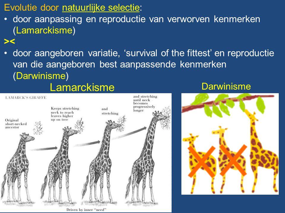 Lamarckisme Evolutie door natuurlijke selectie: