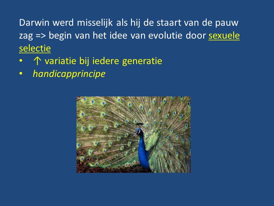 Darwin werd misselijk als hij de staart van de pauw zag => begin van het idee van evolutie door sexuele selectie