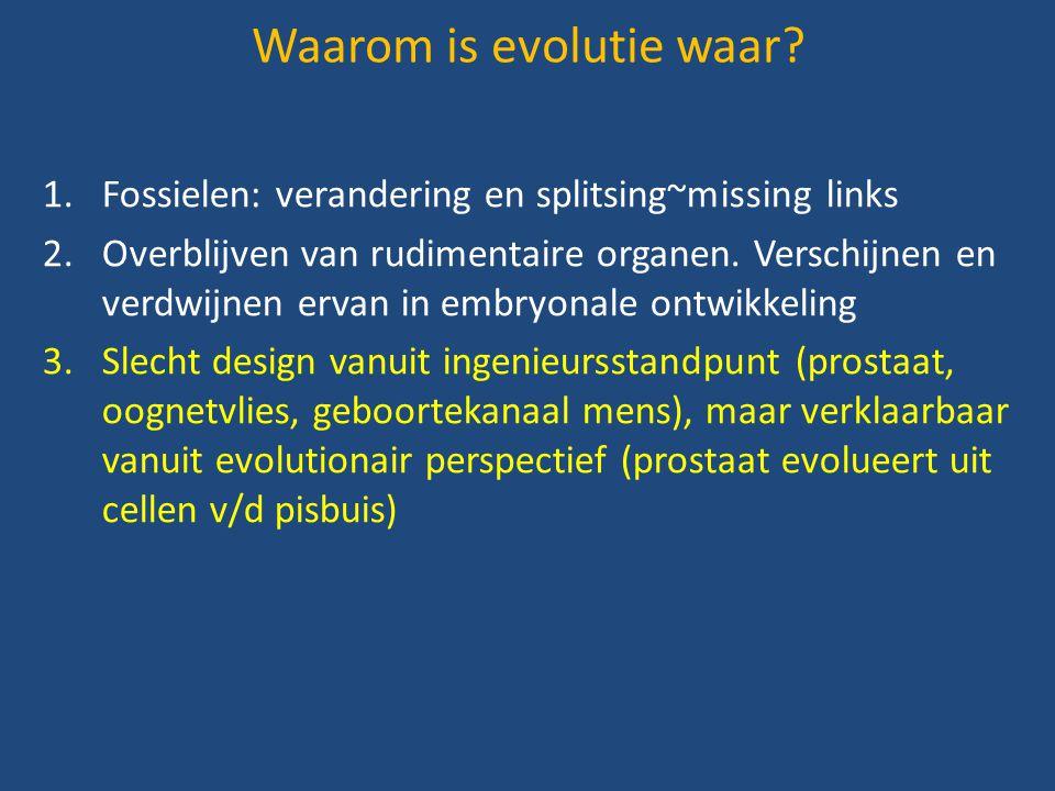 Waarom is evolutie waar