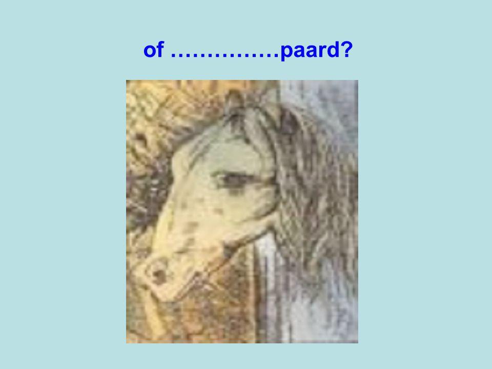 of ……………paard
