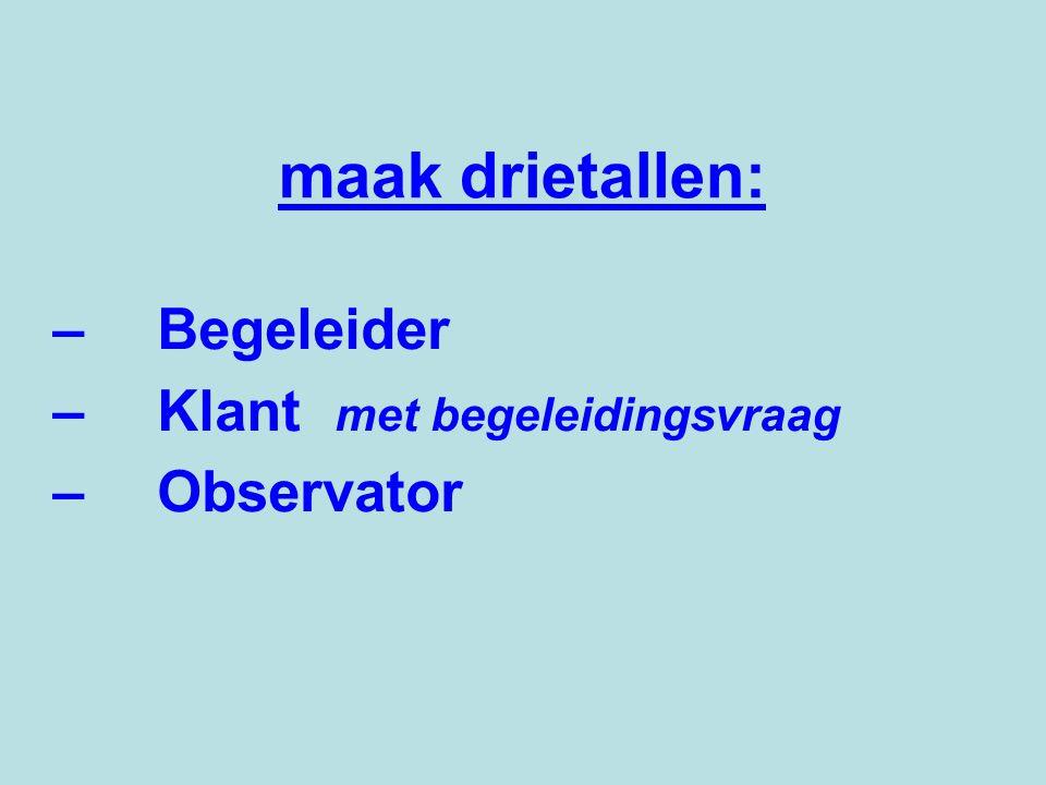 – Begeleider – Klant met begeleidingsvraag – Observator