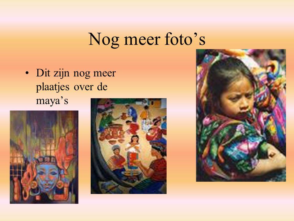 Nog meer foto's Dit zijn nog meer plaatjes over de maya's