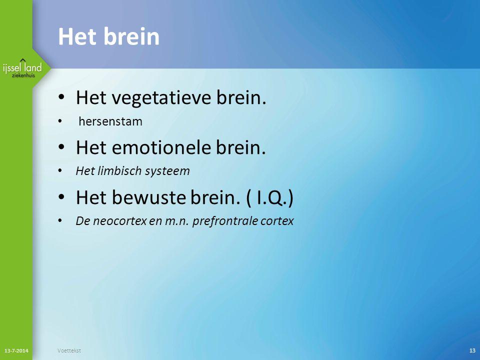 Het brein Het vegetatieve brein. Het emotionele brein.