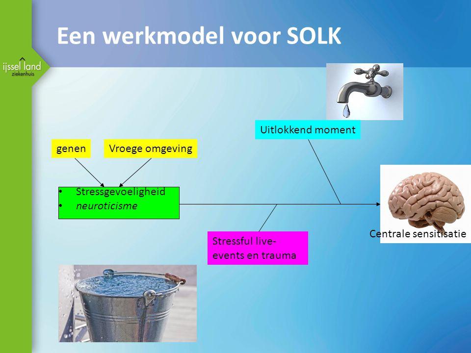 Een werkmodel voor SOLK