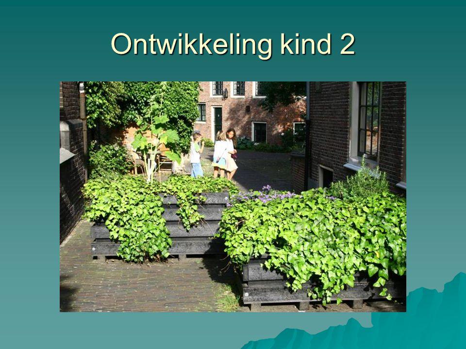 Ontwikkeling kind 2 Goudsmitspleintje, Haarlem