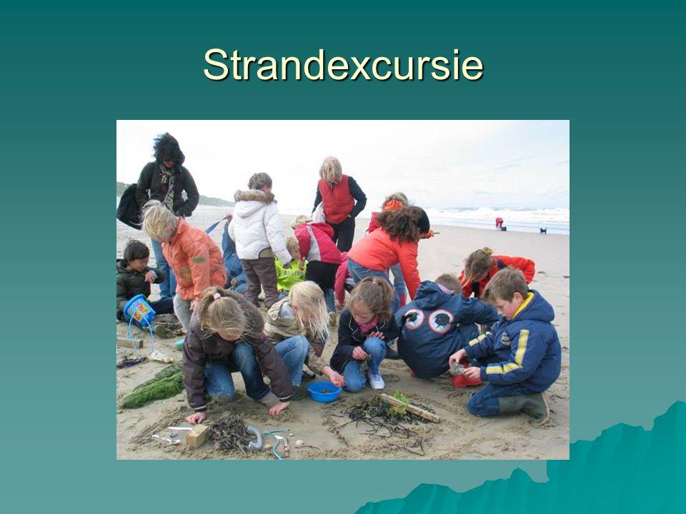 Strandexcursie