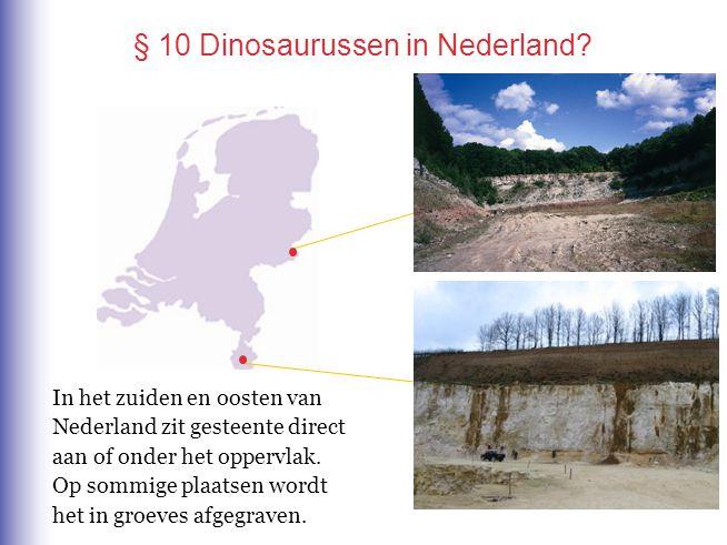 § 10 Dinosaurussen in Nederland