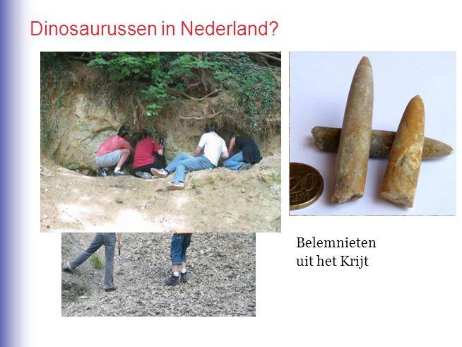 Dinosaurussen in Nederland