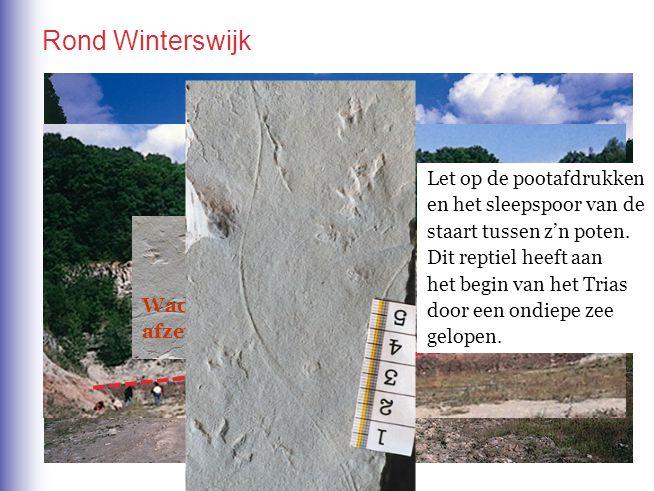 Rond Winterswijk In de omgeving van Winterswijk in de