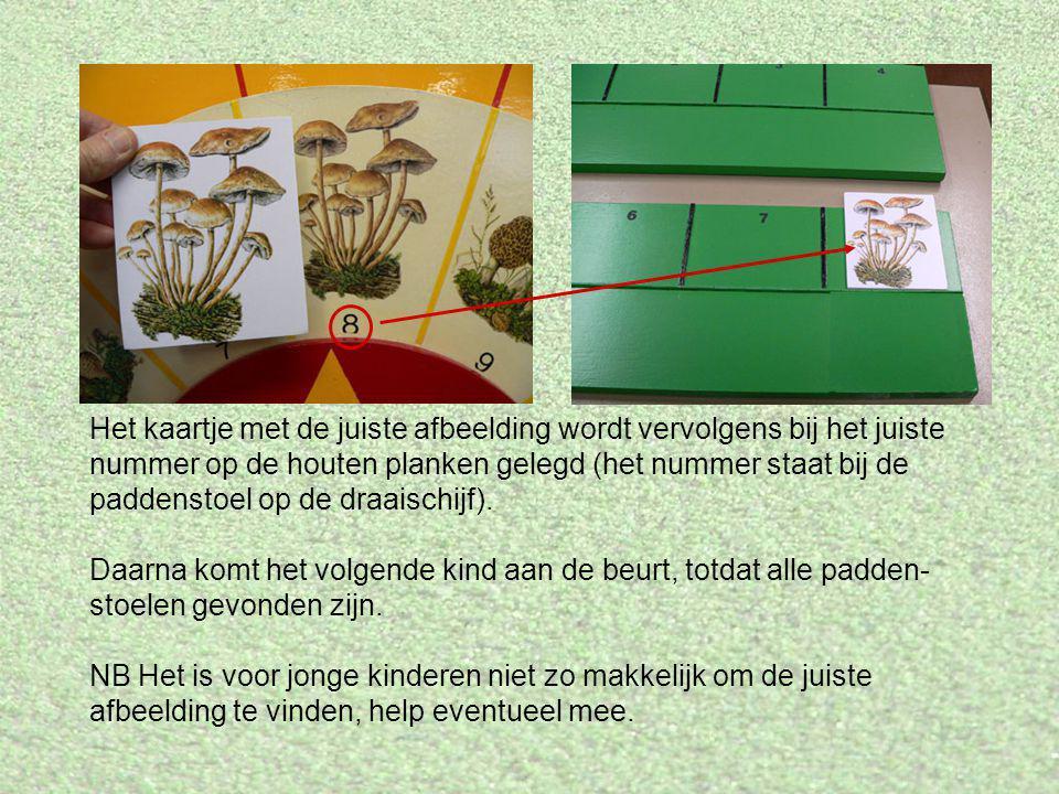 Het kaartje met de juiste afbeelding wordt vervolgens bij het juiste nummer op de houten planken gelegd (het nummer staat bij de paddenstoel op de draaischijf).