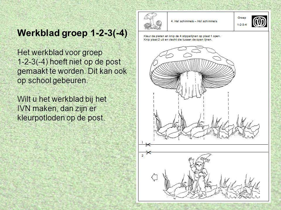 Werkblad groep 1-2-3(-4)