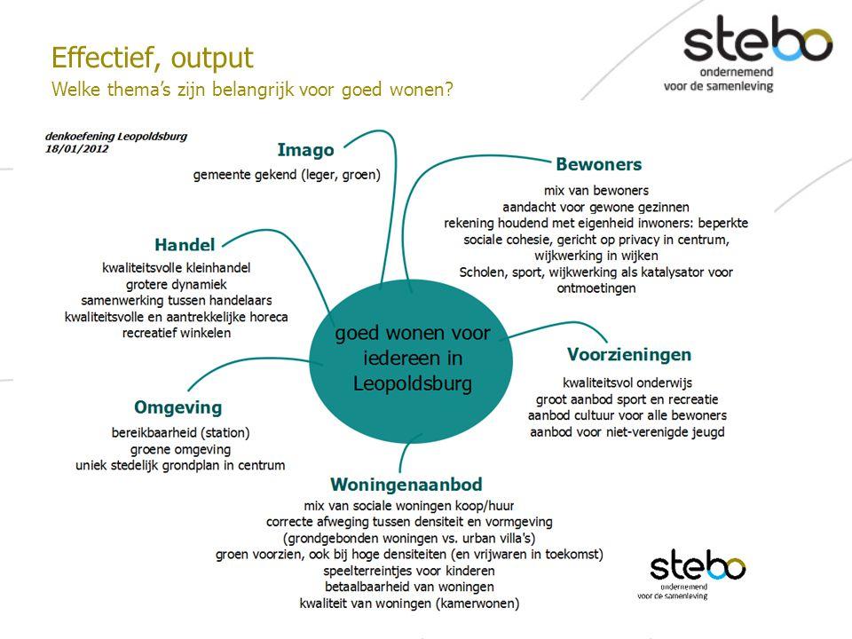 Effectief, output Welke thema's zijn belangrijk voor goed wonen