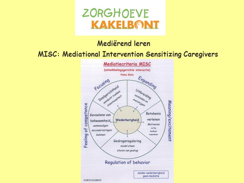 Mediërend leren MISC: Mediational Intervention Sensitizing Caregivers