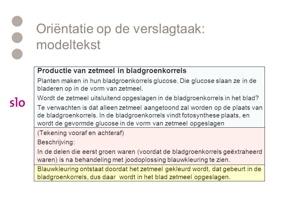 Oriëntatie op de verslagtaak: modeltekst
