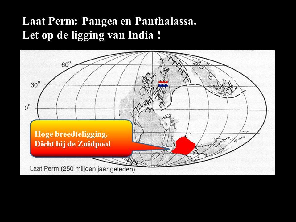 Laat Perm: Pangea en Panthalassa. Let op de ligging van India !