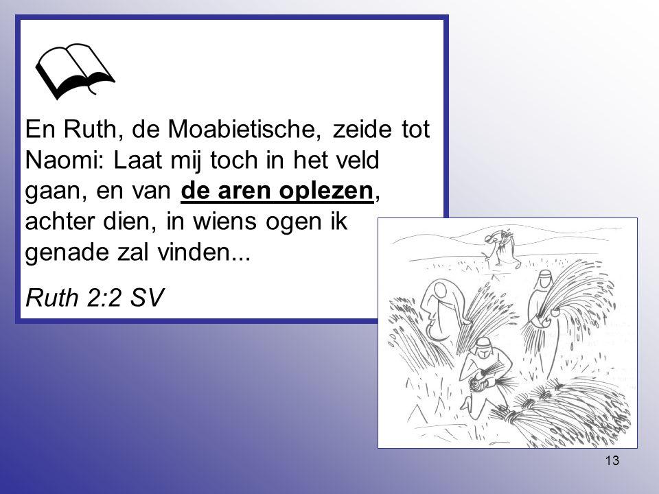 En Ruth, de Moabietische, zeide tot Naomi: Laat mij toch in het veld gaan, en van de aren oplezen, achter dien, in wiens ogen ik genade zal vinden...