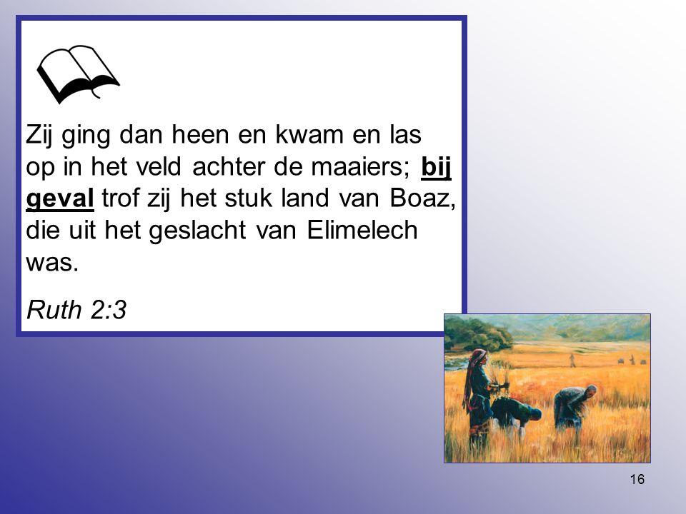 Zij ging dan heen en kwam en las op in het veld achter de maaiers; bij geval trof zij het stuk land van Boaz, die uit het geslacht van Elimelech was.