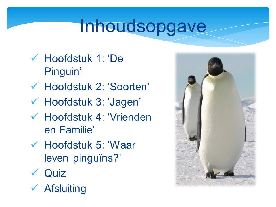 Inhoudsopgave Hoofdstuk 1: 'De Pinguin' Hoofdstuk 2: 'Soorten'