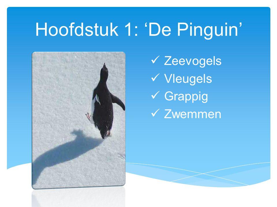 Hoofdstuk 1: 'De Pinguin'