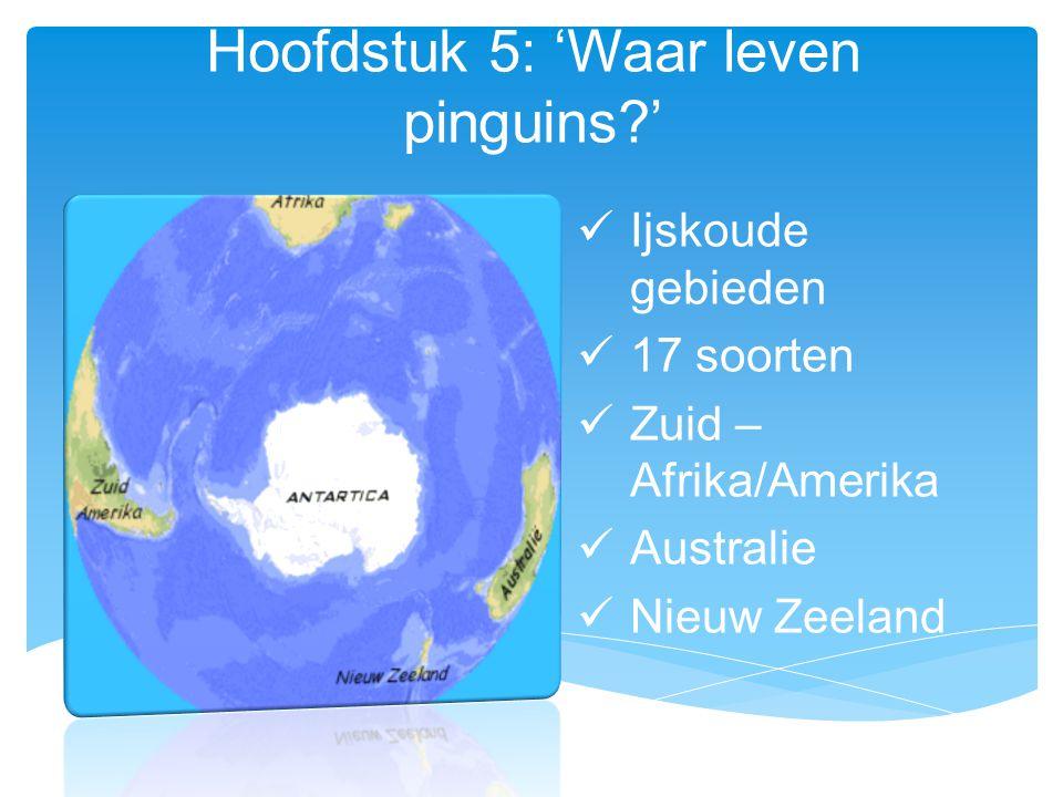 Hoofdstuk 5: 'Waar leven pinguins '