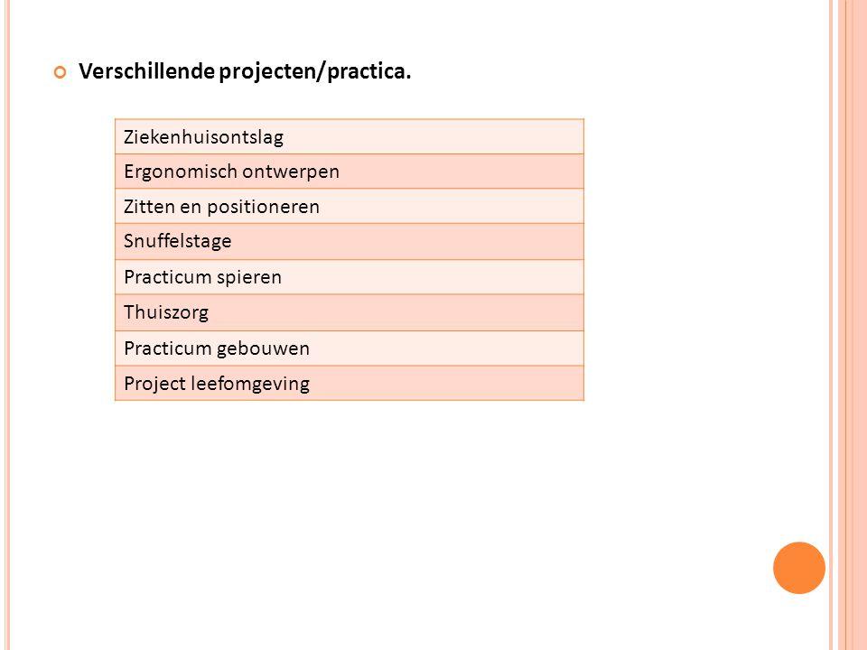 Verschillende projecten/practica.