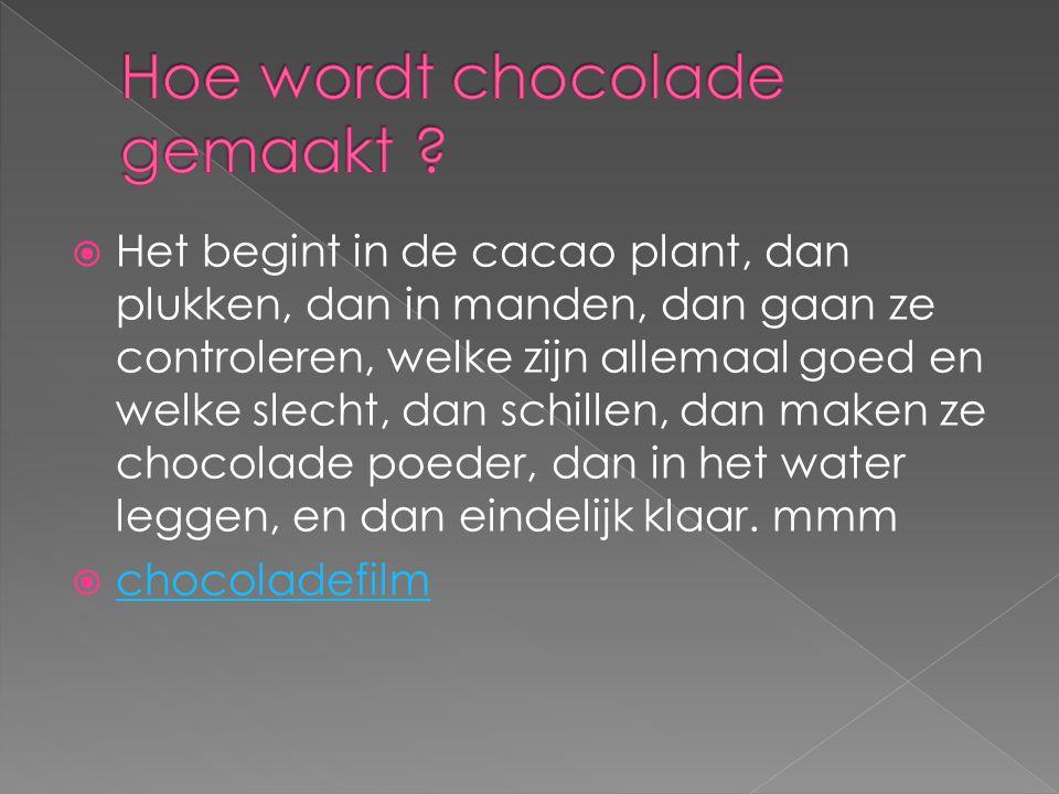 Hoe wordt chocolade gemaakt