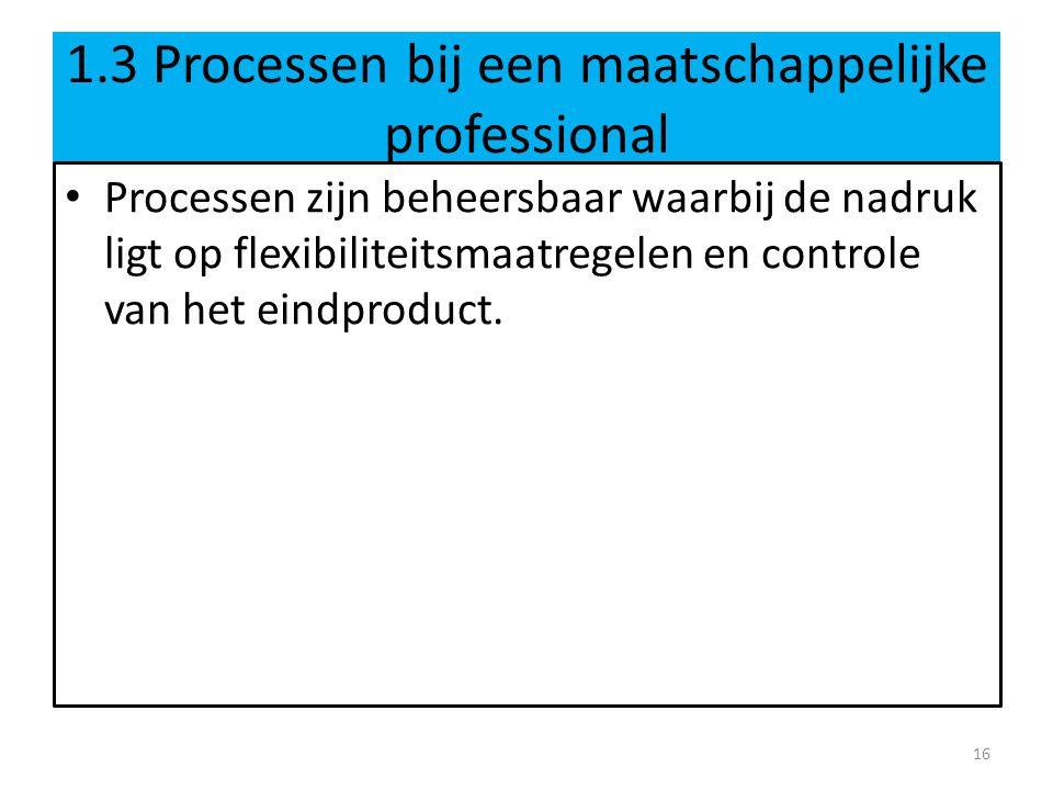 1.3 Processen bij een maatschappelijke professional