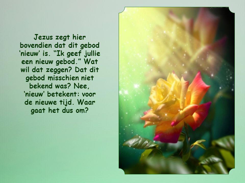 Jezus zegt hier bovendien dat dit gebod 'nieuw' is